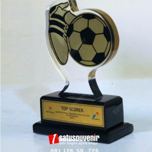 Plakat Akrilik Top Soccer